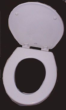 La lunette des WC est importante car elle permet de garder les toilettes propres